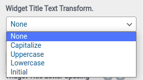 Widget Title Text Transform